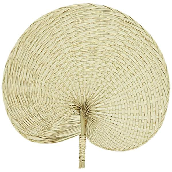 Palm fan WEAVE
